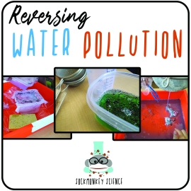 mixtures solutions water pollution conservation green environment physical science lab experiment STEM