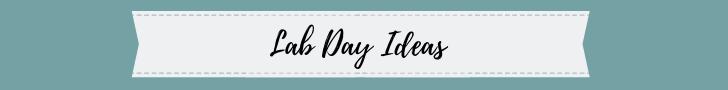 sockmonkey science lab day ideas