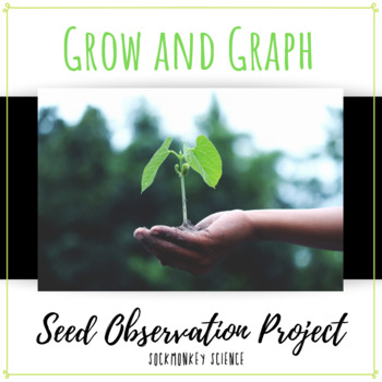 seed observation activity spring science activities