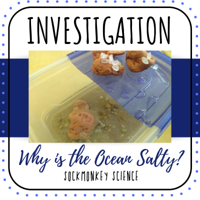 solutions lab experiment for elementary science