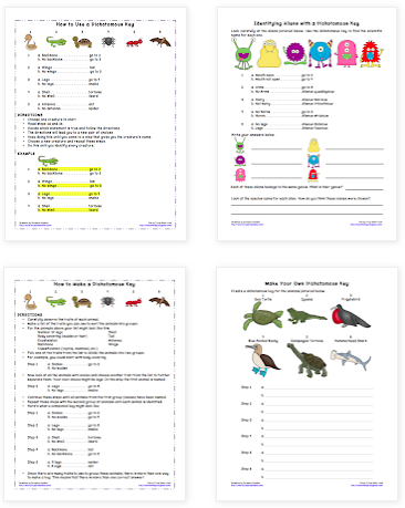 Bookish Ways Free Dichotomous Key Worksheets